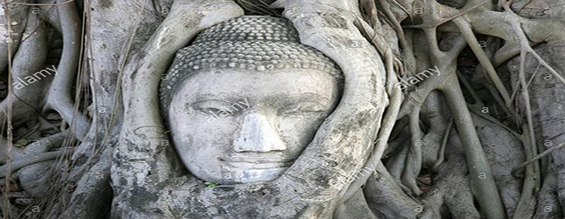 Aperitivo nel Tempio Segreto di Villa Borghese 20 giugno
