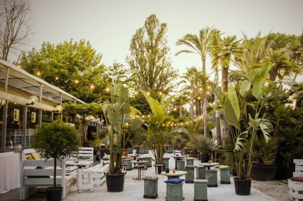 santanera bar y palmas location 3